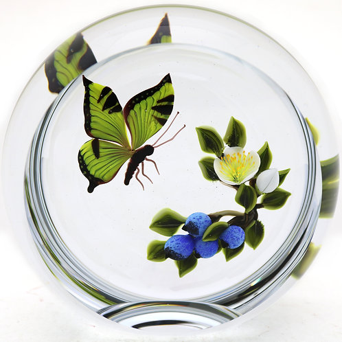 Large Victor Trabucco Swallowtail Butterfly & Berries Art Glass Paperweight