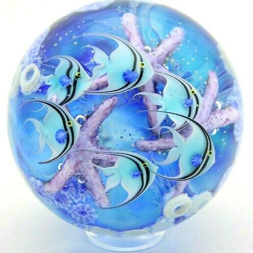 Daniel Salazar Angelfish & Starfish Aquarium Art Glass Paperweight Marble