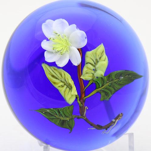 Paul Stankard Experimental Flower & Roots Art Glass Paperweight