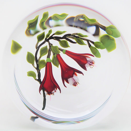 Magnum Victor Trabucco Red Fuchsia Flowers Art Glass Paperweight
