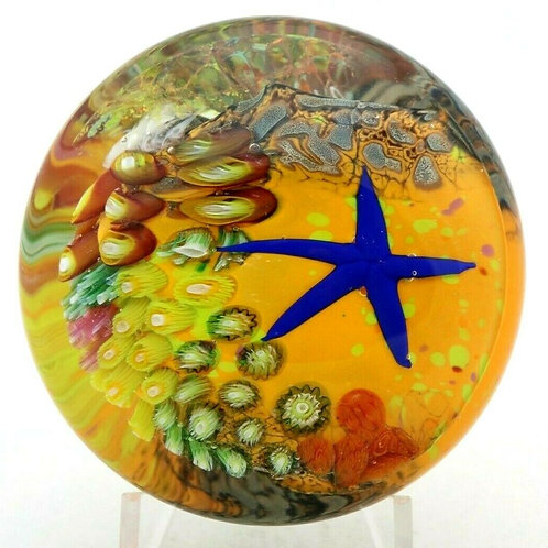 Peter Raos Vibrant Starfish Reef Aquarium Art Glass Paperweight