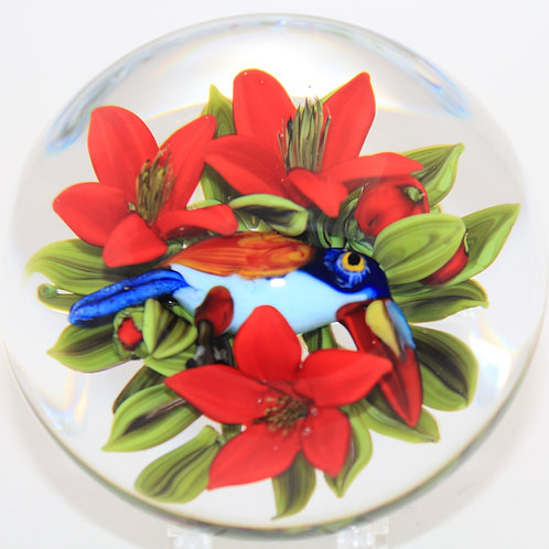 Magnum Rick Ayotte Colourful Tropical Toucan Art Glass Paperweight