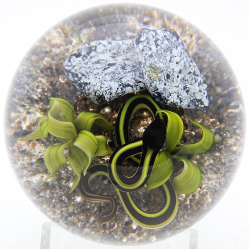 Magnum Victor Trabucco Rocky Desert Snake & Aloe Art Glass Paperweight
