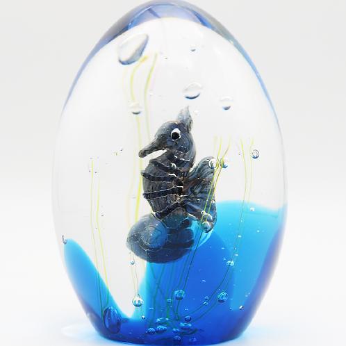 Elio Raffaeli Murano Seahorse Aquarium Art Glass Paperweight