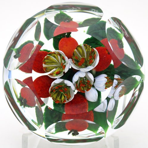 Magnum Rick Ayotte Multifaceted Hawthorn Berry Bouquet Art Glass Paperweight