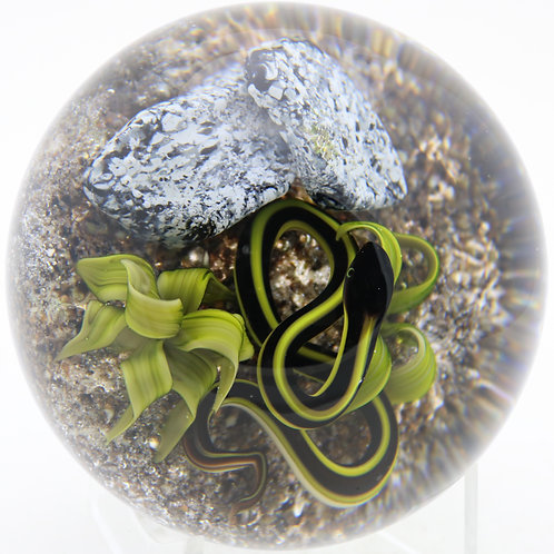 Magnum Victor Trabucco Snake Coiled with Aloe Art Glass Paperweight