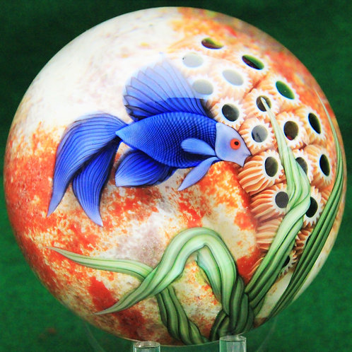 Large Orient & Flume Blue Beta Fish Aquarium Art Glass Paperweight