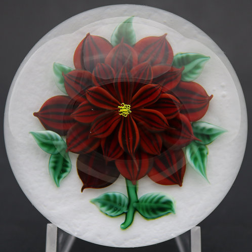 Randall Grubb Red Dahlia Flower In Snow Art Glass Paperweight