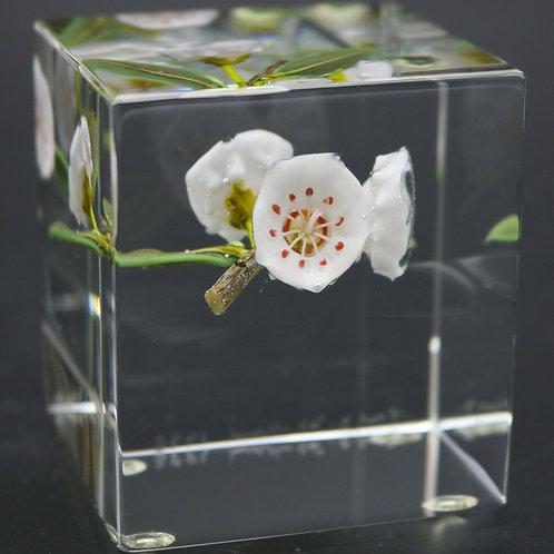 Paul Stankard Mountain Laurels on Branch Art Glass Paperweight Block
