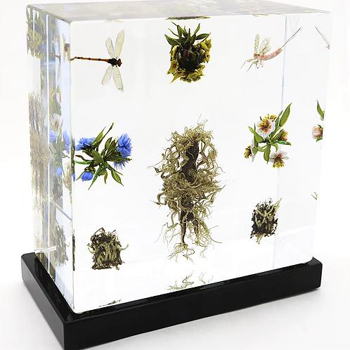 Spectacular Paul Stankard  Art Glass Botanical Assemblage Sculpture Studio Block