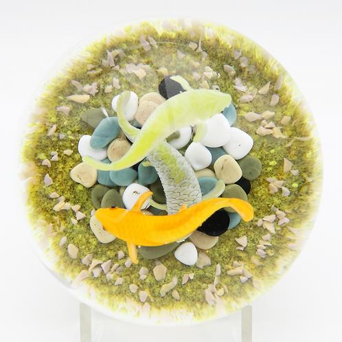 Gordon Smith Multicoloured Koi Fish Pond Art Glass Paperweight