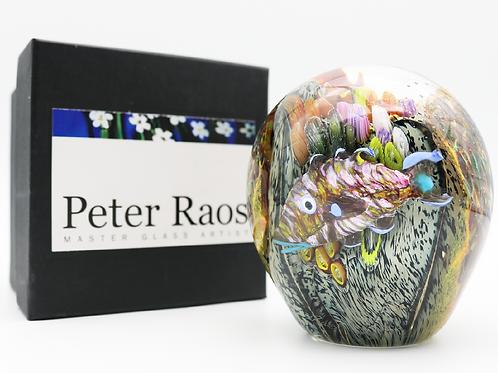 Large Peter Raos Coral Reef Aquarium Art Glass Paperweight w/Box