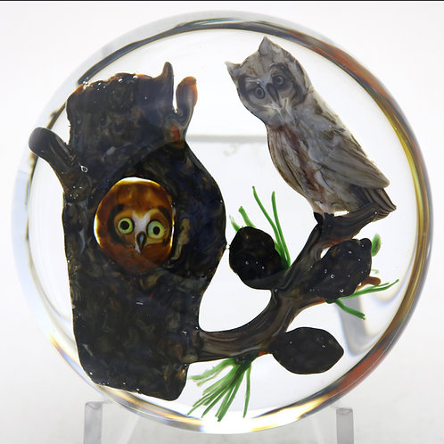 Rick Ayotte Artist Proof Nesting Owl Duo in Tree Art Glass Paperweight