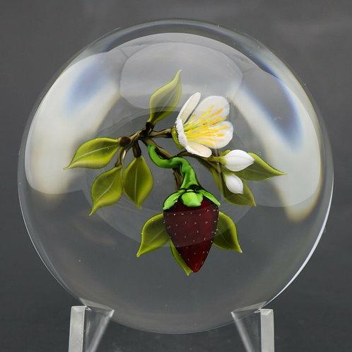 Victor Trabucco Ripe Strawberry & Blossom Art Glass Paperweight