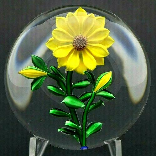 Bob Banford Yellow Sunflower & Buds Art Glass Paperweight