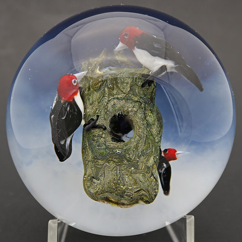 Rick Ayotte Red-headed Woodpeckers Nesting Art Glass Paperweight