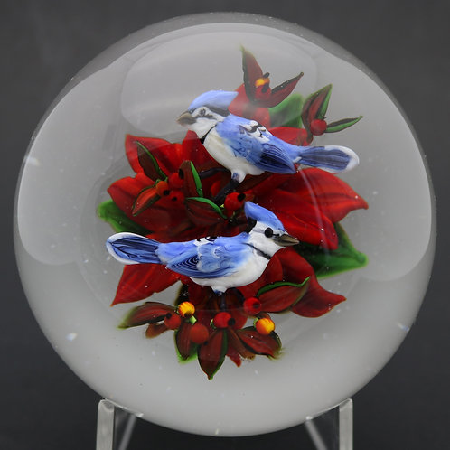 Rick Ayotte Realistic Blue Jay Duo on Poinsettia Art Glass Paperweight