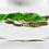 Thumbnail: Gordon Smith Lady Slipper Orchid Flower Art Glass Paperweight