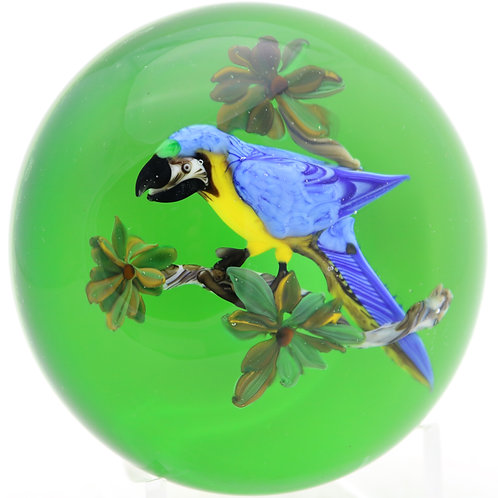 Rick Ayotte Blue & Gold Macaw Bird on Branch Art Glass Paperweight