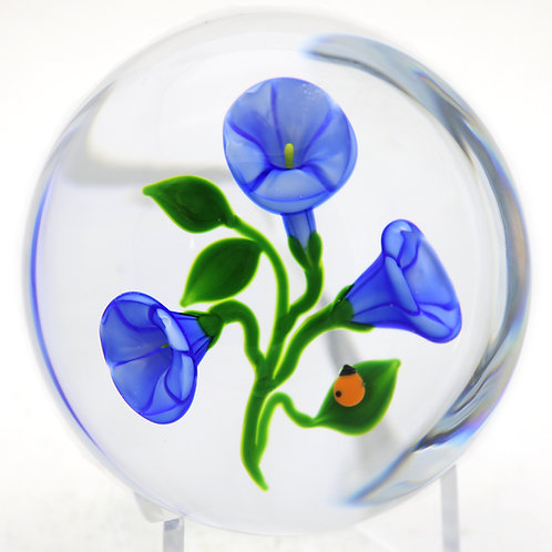 Victor Trabucco Vibrant Morning Glory & Beetle Art Glass Paperweight