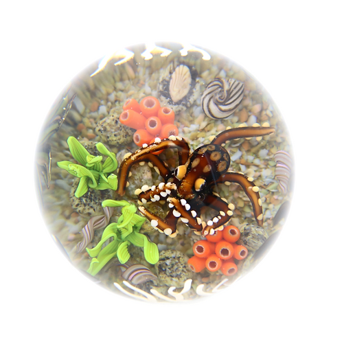 Cathy Richardson Octopus Aquarium Art Glass Paperw
