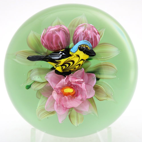 Magnum Rick Ayotte Magnolia Warbler Bird Art Glass Paperweight