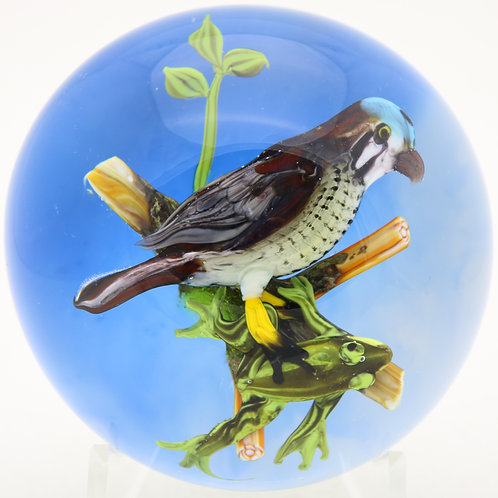 Rick Ayotte Sparrow Hawk & Frog Art Glass Paperweight
