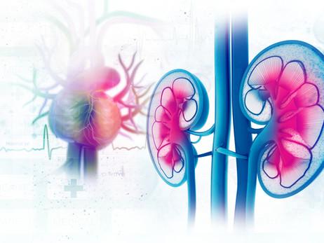 Quais são os fatores de risco de insuficiência renal aguda após cirurgia cardíaca?