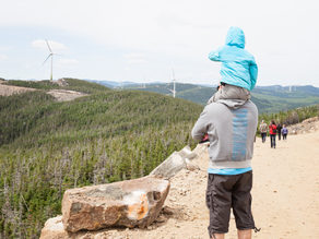 Activité familiale – Visite des parcs éoliens en opération