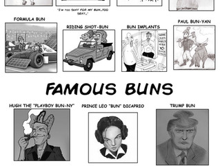 Mad Magazine Pitch - Mad Guide to Man Buns