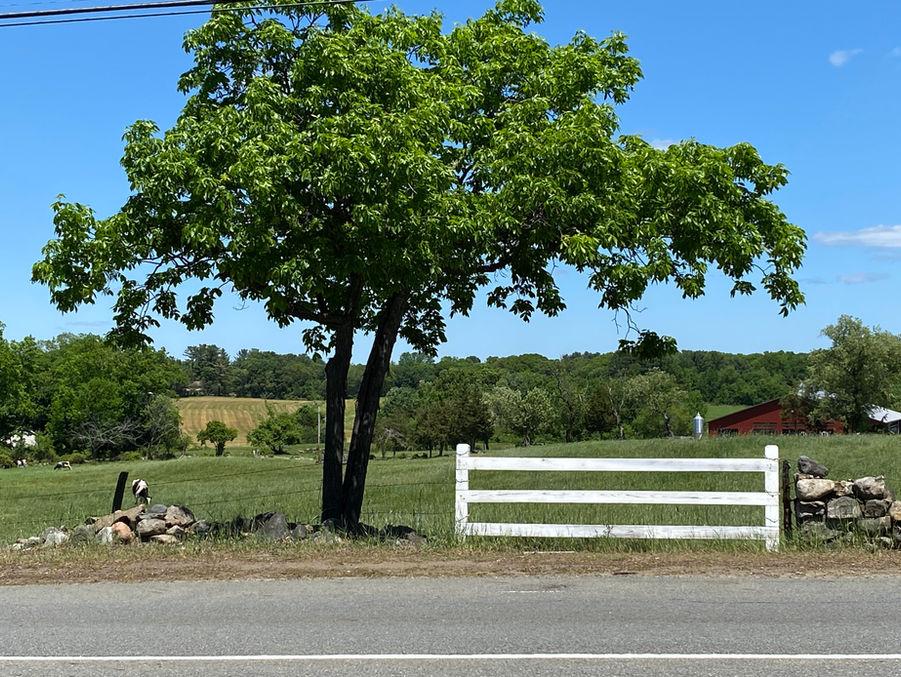 Route 114, Middleton