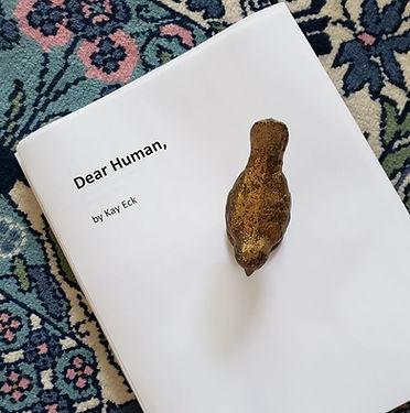 Dear Human Manuscript.jpg