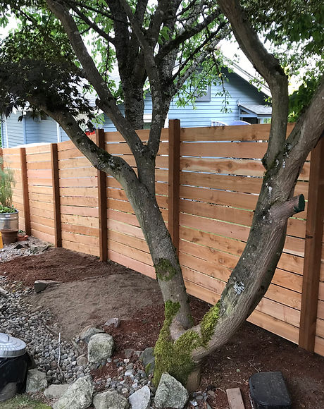 Modern Cedar Fence