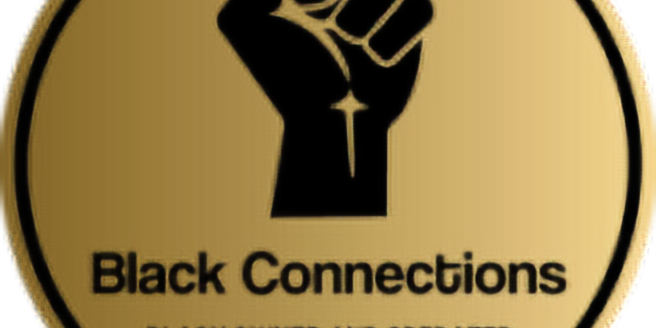 [Book Sale] Black Connections Business Expo