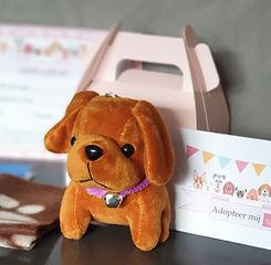 Kinderfeestje Adopteer een puppy