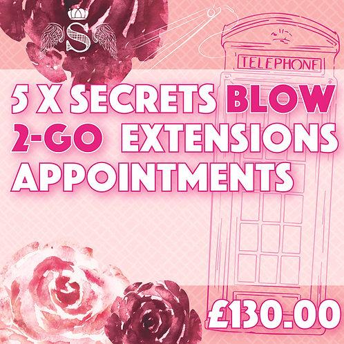 5 x Secrets Blow 2-go Extensions Appointments