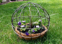 sphere w plants