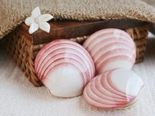 Massage coquillages chauffants 1h30