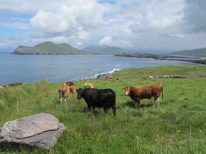 County Kerry