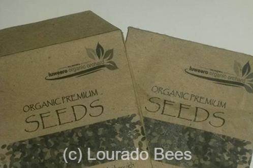 Seeds honey bees forage