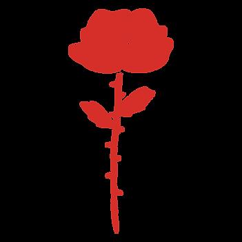 elementos-vermelho-9.png