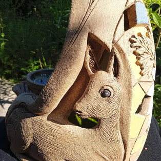 Roe deer companion
