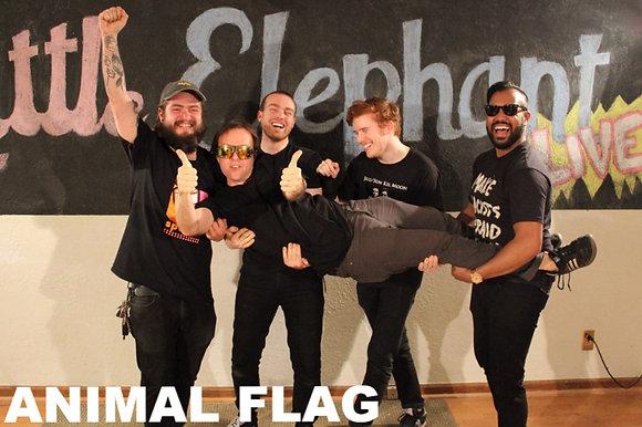 Animal Flag Session Vinyl
