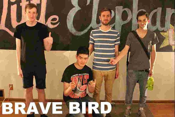 Brave Bird Session Vinyl
