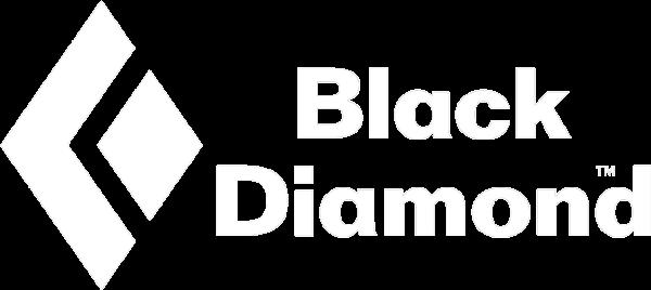 BD-Logo600