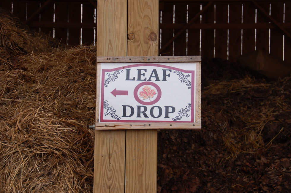 Sign at Leaf Drop site indicating the correct bay to leave your yard waste.