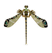 dennis-dragonfly.png