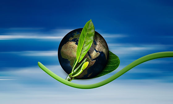 eco earth.jpg