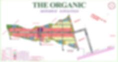 THE ORGANIC MAP DINAL A4_edited.jpg