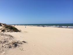 Der Strand in der nahen Umgebung